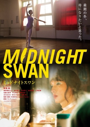 Midnight-swan